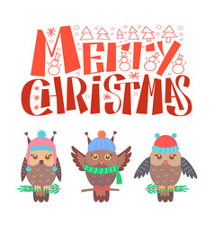 merry christmas bullfinch set sitting on branch vector image
