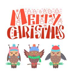 merry christmas bullfinch set sitting on branch vector image