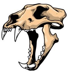 Tiger skull vector