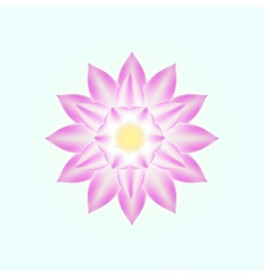 pink lotus isolated vector image