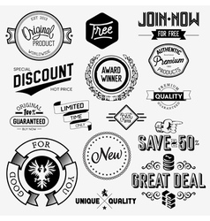 Set of vintage bagdes vector image vector image