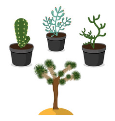desert plants isolated vector image