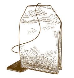 engraving of tea bag vector image