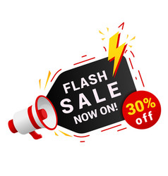 flash sale banner goods reduced prices vector image