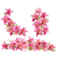 Garland of orchids vector