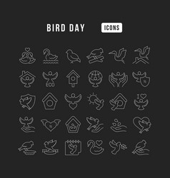 line icons bird day vector image
