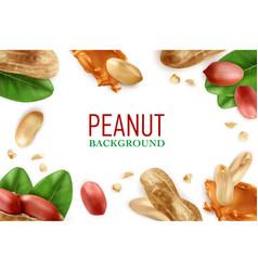 Peanut realistic frame vector