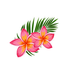 Summer tropical. Hawaiian clipart vector images