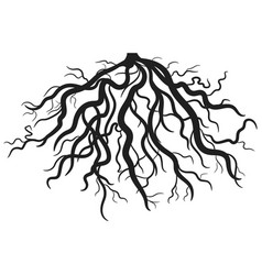Roots eps vector