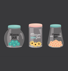 Set mason jars with lid and flowers vector