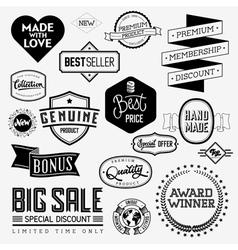 Set of vintage bagdes vector image