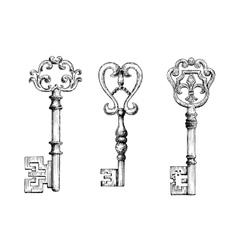 Sketch of medieval skeleton keys vector