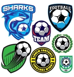 Sports badge with a soccer ball and shark for the vector