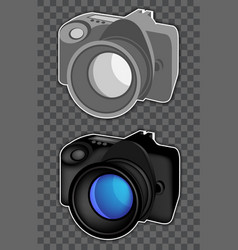 Two photo cameras vector