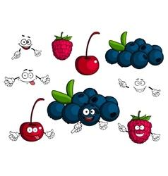 Cartoon cherry raspberry blueberries characters vector image vector image