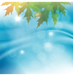 autumn leaves on a background of water vector image vector image