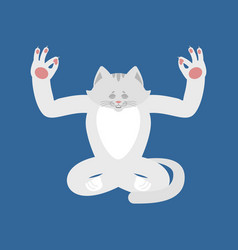 cat yoga pet yogi isolated kitty relaxation and vector image