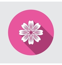 Flower icon chamomile aster daisy vector