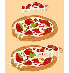 Italian handmade pizza 1 vector
