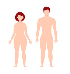 male and female body silhouette template flat vector image