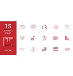 rich icons vector image