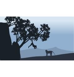 silhouette of monkey in fields vector image