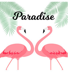 summer creative poster with pink flamingo card vector image