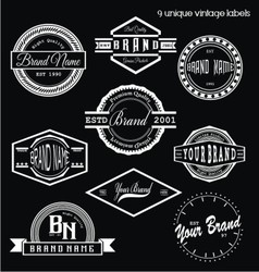 Unique Vintage Labels vector image