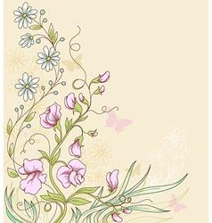 Sweet pea vector image vector image