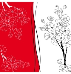 Japan cherry blossom branch vector image vector image