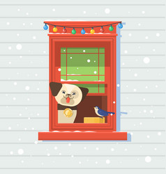 dog on the window winterchristmas card vector image