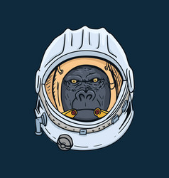 Gorilla head in spaceman helmet hand drawn t vector