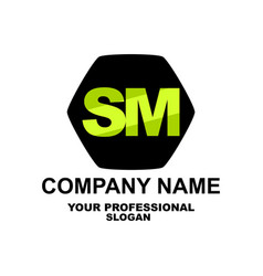 letter logo two letters s and m vector image