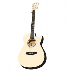 Vector white acoustic cutaway vector
