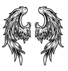 Wings bird feather black andwhite tattoo vector