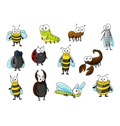 Cartoon funny insect animals characters vector