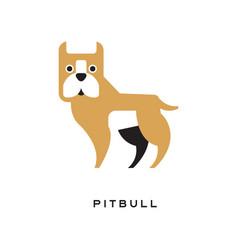 Cartoon pitbull character isolated on white vector