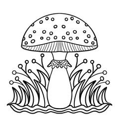 coloring book fontastic mushroom fly agaric vector image