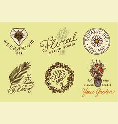 flower shop emblems and bright logo vintage vector image