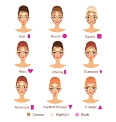 Highlight contour and blush for different female vector