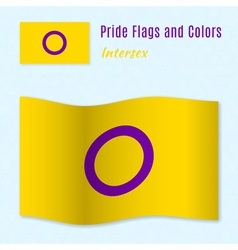 Intersex pride flag with correct color scheme vector image