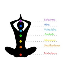 Yoga teacher and chakras vector image