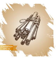 silhouettes of cinnamon sticks hand drawn vector image