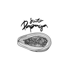 papaya monochrome vector image