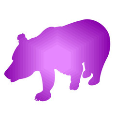 silhouette of brown bear abstraction of violet vector image