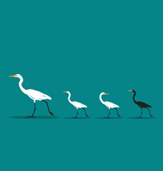 Walking bird on blue background difference vector