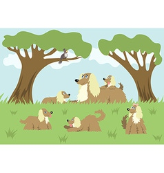 Fluffy dog and her puppies vector image vector image