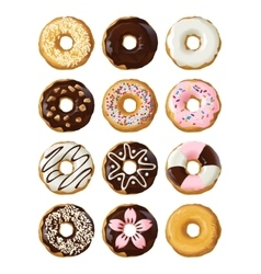 Set delicious donuts in glaze vector image