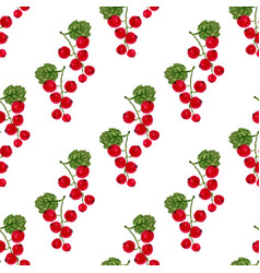 watercolor seamless pattern with red currant vector image vector image