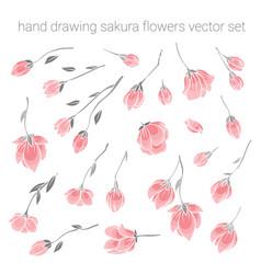 large set of delicate pink sakura cherry flowers vector image